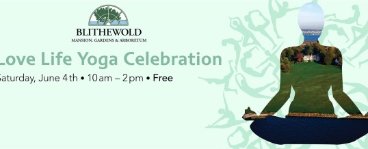 Outdoor Yoga at Blithewold Mansion