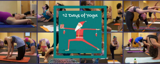 Twelve Days of Yoga